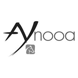 AYNOOA